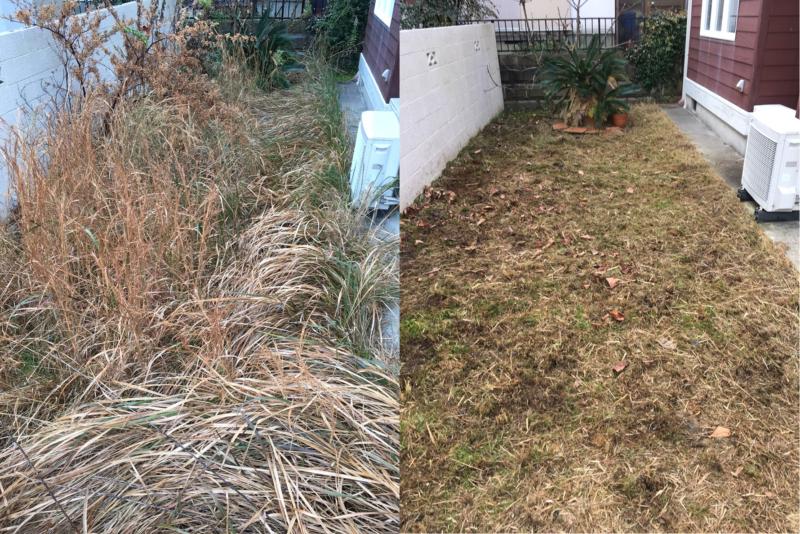 20190115草刈り